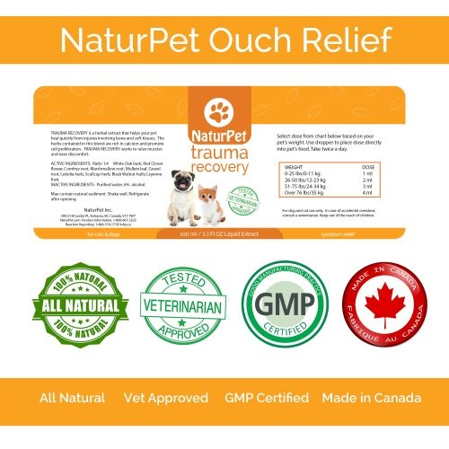 NaturPet NaturPet-Trauma Recovery 100ml