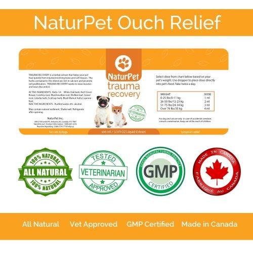 NaturPet NaturPet-Trauma Recovery 100ml
