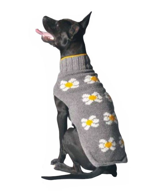 Chilly Dog Sweaters Chilly Dog Sweaters - Grey Daisy