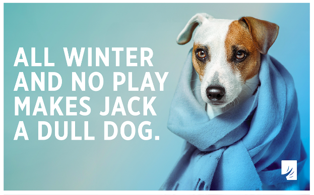 All Winter and No Play Makes Jack a Dull Dog