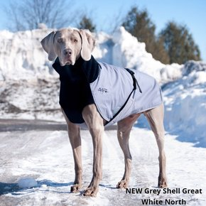 Chilly Dogs Jacket- Great White North GREY SHELL
