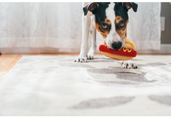 P.L.A.Y. PLAY - MINI American Classic Hot Dog