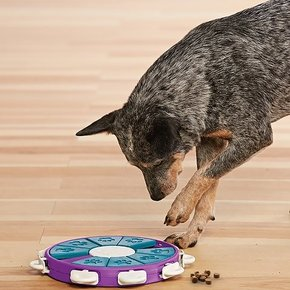 Nina Ottosson - Dog Twister Puzzle Toy Advanced