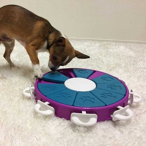 Nina Ottosson Nina Ottosson - Dog Twister Puzzle Toy Advanced