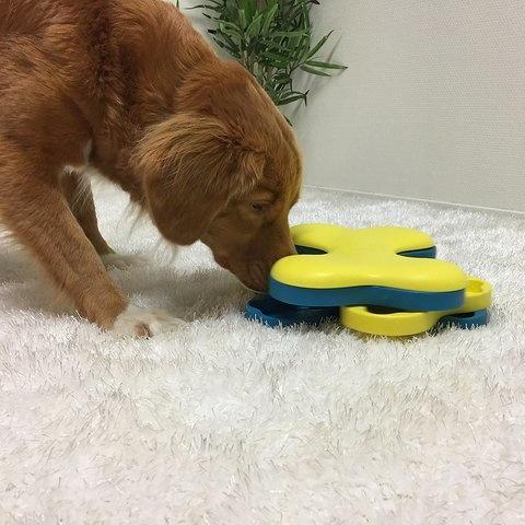Nina Ottosson Nina Ottosson - Dog Tornado Puzzle Toy Intermediate