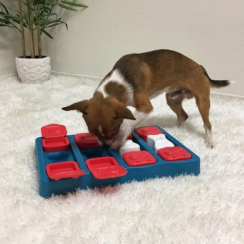 Nina Ottosson Nina Ottosson - Dog Brick Puzzle Toy Intermediate