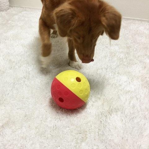 Nina Ottosson Nina Ottosson - Dog Treat Tumble Ball