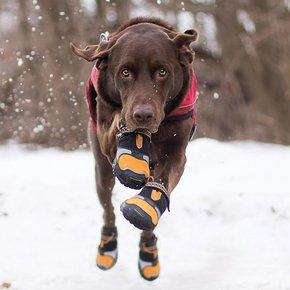 Kurgo - Step n Strobe Dog Shoes