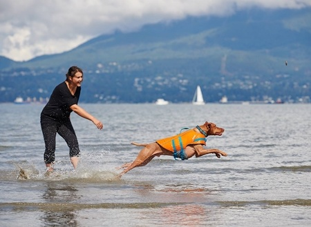 RC Pets RC Pet - Tidal Life Vest