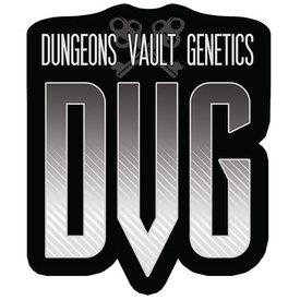 Dungeons Vault Genetics Dungeons Vault Genetics Biker Purps Reg 12pack
