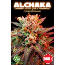 Alphakronik Alphakronik Alchaka Reg 5 pk