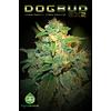 Dogbud BX2 Reg 5 pk