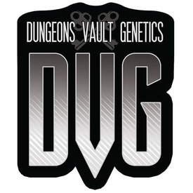 Dungeons Vault Genetics DVG Sangiovese Reg 12 pk