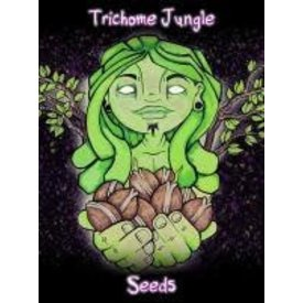 Trichome Jungle Trichome Jungle Sour Mandarina Fem 5 pk
