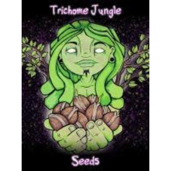Trichome Jungle Sour Mandarina Fem 5 pk