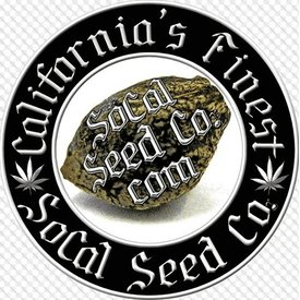"SoCal Seed Co. SoCal Seed Co. Hair of the Dawg V2 ""Dawg Tonic"" Reg 5 pk"