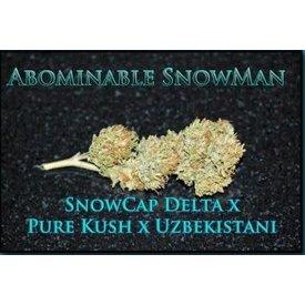 SnowHigh Seeds SnowHigh Seeds Abominable Snowman Reg 10 pk