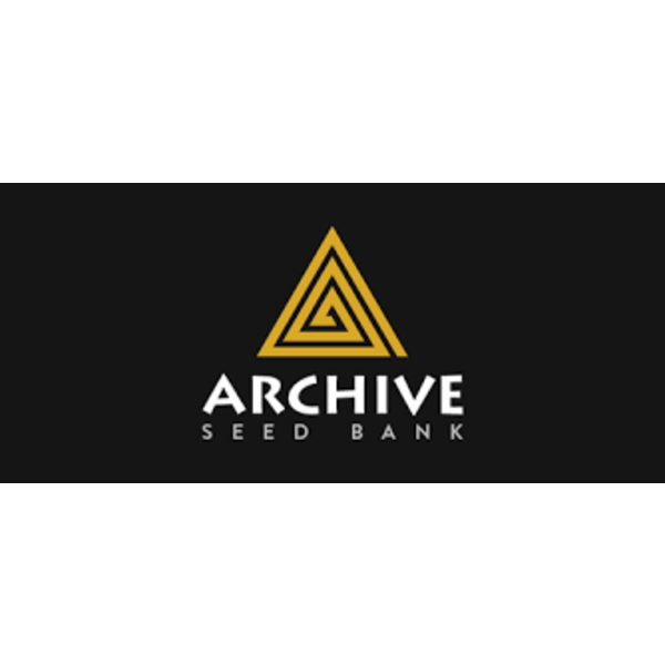 Archive Archive Lost Cause Reg 12 pk