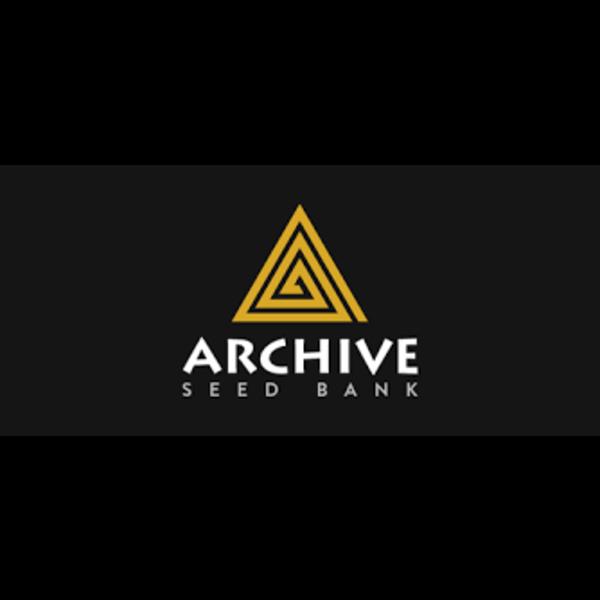 Archive Archive Holy Roller Reg 12 pk