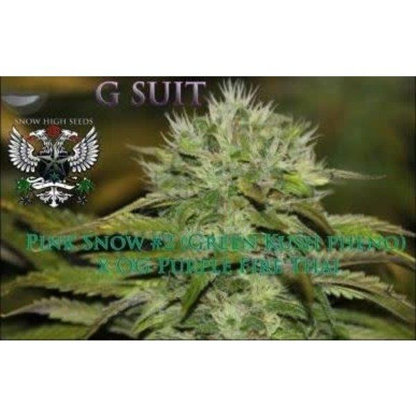 SnowHigh Seeds G Suit Reg 10 pk