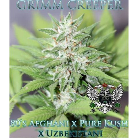 Grim Creeper Reg 10 pk