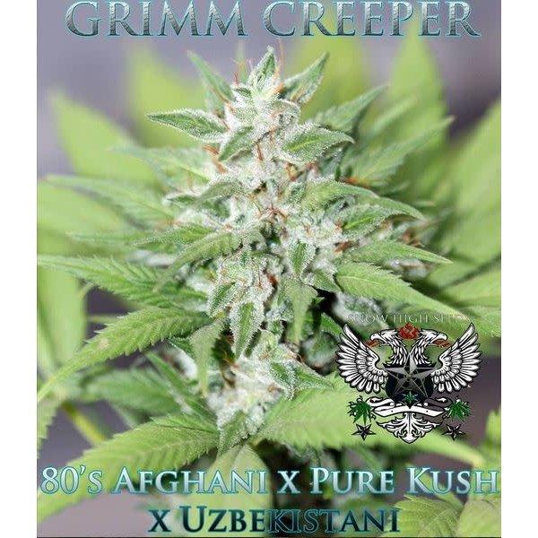 SnowHigh Seeds Grim Creeper Reg 10 pk