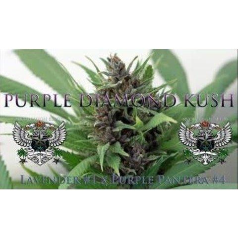 Purple Diamond Kush Reg 10 pk