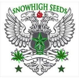 SnowHigh Seeds SnowHigh Seeds True Gangster Kush Reg 10 pk