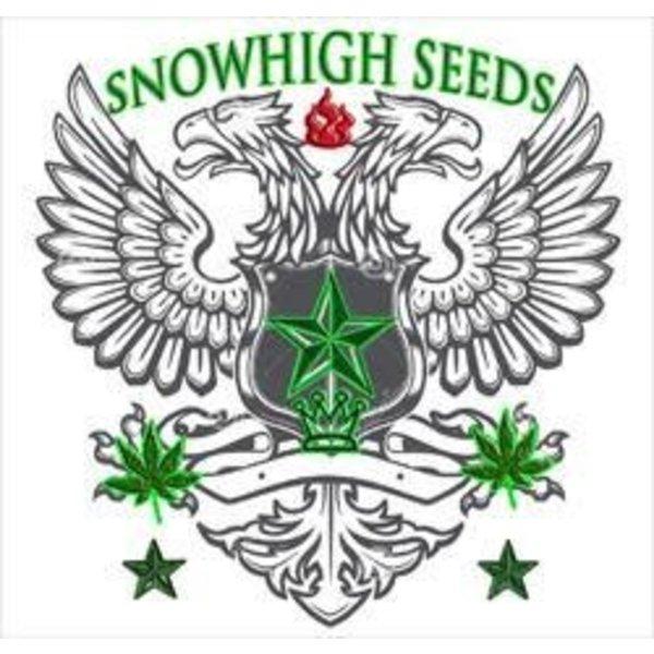 SnowHigh Seeds True Gangster Kush Reg 10 pk