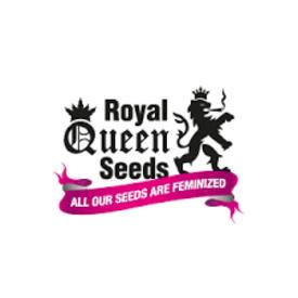 Royal Queen Royal Queen Outdoor Mix Fem 5 pack