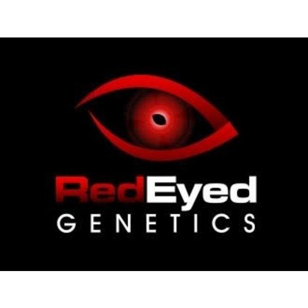 Red Eyed Genetics Nirvana Reg 10 pk