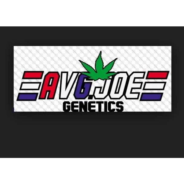Average Joe Average Joe Genetics Raw Dough Reg 5pack