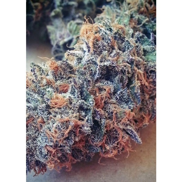 BC Bud Depot Ultimate Purple Reg 12 pk