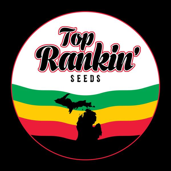Top Rankin Seeds Citrus Sap x Bright Puff Reg 12 pk