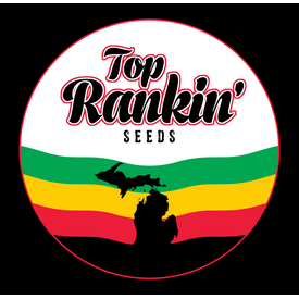 Top Rankin Seeds Top Rankin Seeds Citrus Sap x Canadian Mist Reg 12 pk