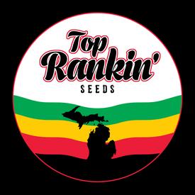 Top Rankin Seeds Love Triangle x AK47 Reg 10 pk