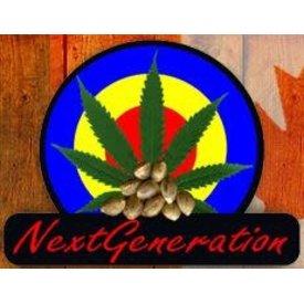 Next Generation Next Generation Medicine Reg 10 pk