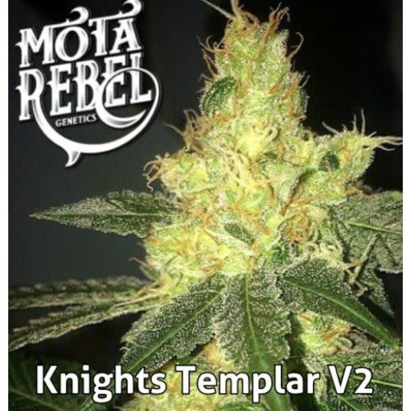 Mota Rebel Knights Templar Reg 10 pk