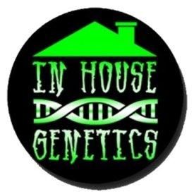 In House Genetics In House Genetics Fruit Punch Fem 12 pk