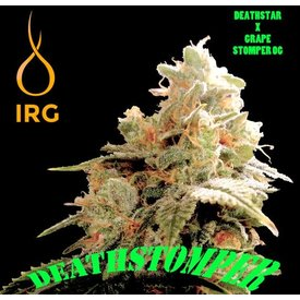 Ice River Genetics Ice River Genetics Death Stomper 12 pk