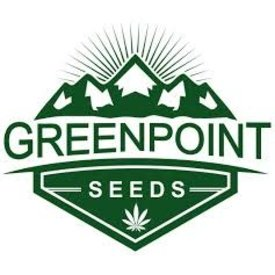 GreenPoint GreenPoint Black Lab F2 x Polar Bear OG Reg 5 pk