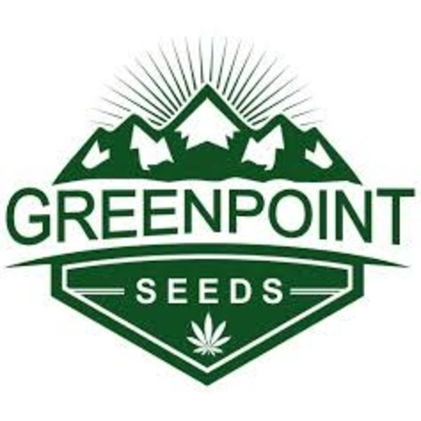 GreenPoint Black Lab F2 x Polar Bear OG Reg 5 pk