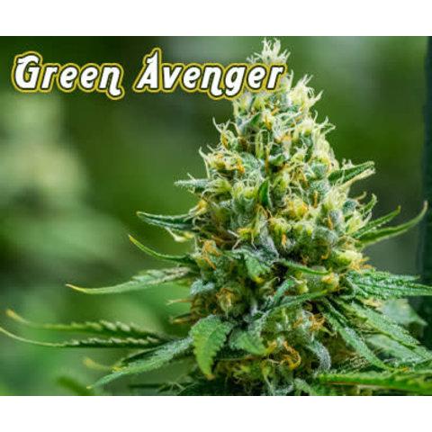 Green Avenger Reg 12 pk