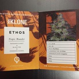 Ethos Genetics Ethos Genetics Tropic Thunder Fem 6pk