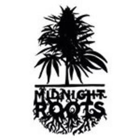 Midnight Roots Midnight Roots Banana Foster Reg 10 pack