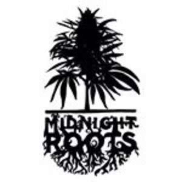 Midnight Roots Banana Foster Reg 10 pk