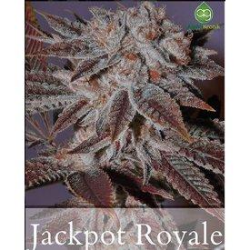 Alphakronik Alphakronik JackPot Royale Reg 10 pk