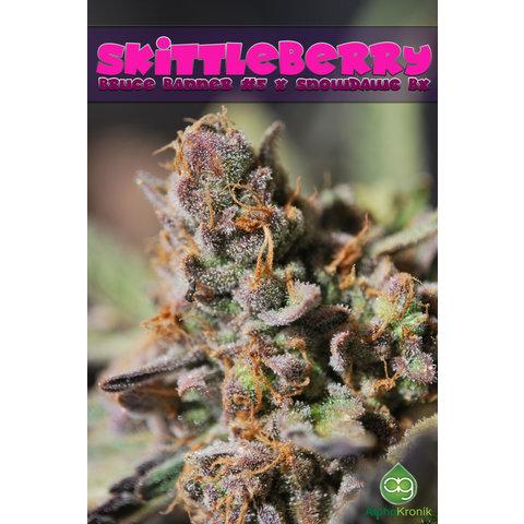 Alphakronik Skittleberry 10 pack