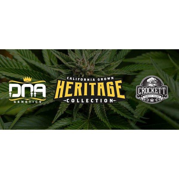 Crockett/DNA Heritage Collection Lemon Glaze Fem 6 pk