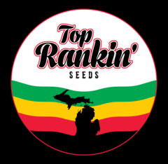 Top Rankin Seeds